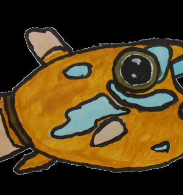 Jaïr Maarsen, Picassovis, Kunst, duiken, Vlindervis